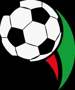 Coppa Hazfi